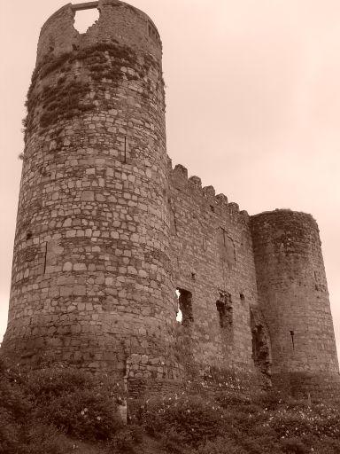 Carlow Castle.