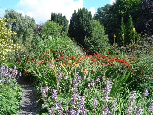 Carlow - Flowers and trees inside the Altamont Gardens.