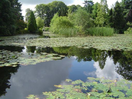 Carlow - Lac d'Altamont.