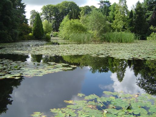 Carlow - Lake of Altamont.