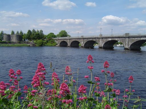 Offaly_3